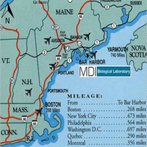 Regional map of the MDI Biological Laboratory