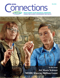 connections_fall_2013_cover