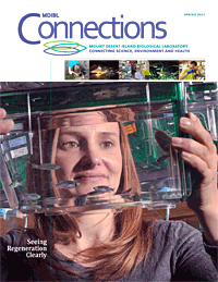 connections_spring_2012_cover