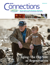 connections_spring_2013_cover