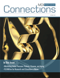 connections_spring_2014_cover