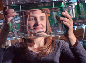 Sandra Rieger, Ph.D., with zebrafish