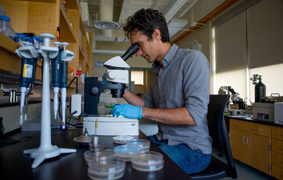 The Laboratory by the Sea – MDI Biological Laboratory
